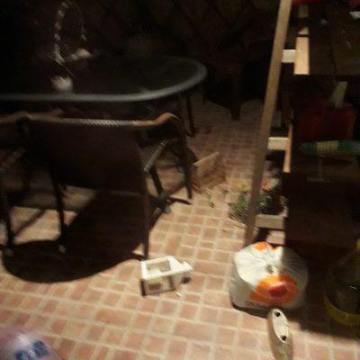 kozan.gr: Κοζάνη: To σχόλιο αγανάκτησης συμπολίτισσάς μας, στην περιοχή του Αγ. Νικάνορα, το μπαλκόνι της οποίας το έχουν κάνει άνω – κάτω τα πετροκούναβα (Φωτογραφία)