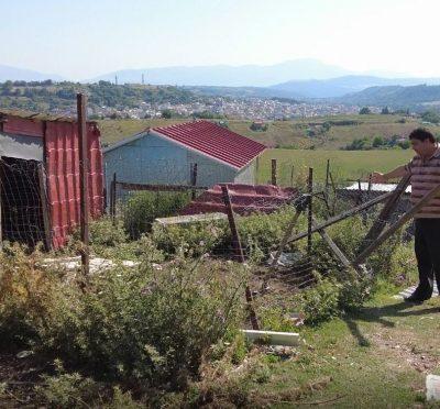Γρεβενά: Επιδρομή αρκούδας και αρπαγή προβάτου από την αυλή μονοκατοικίας (Bίντεο)