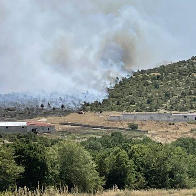 kozan.gr: Ώρα 20:40: Ποιες φωτιές είναι σε εξέλιξη αυτή την ώρα, στην Π.Ε. Κοζάνης και σε τι κατάσταση βρίσκονται οι επιχειρήσεις κατάσβεσης από πλευράς πυροσβεστικής υπηρεσίας
