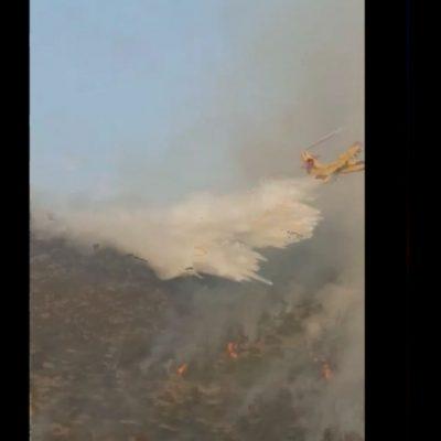kozan.gr: Ώρα 20:15:  Ρίψεις νερού, αυτή την ώρα, από Canadair στο μέτωπο της φωτιάς στην Ζωοδόχο Πηγή (Βίντεο & νέες Φωτογραφίες)