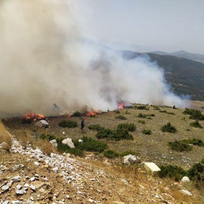 kozan.gr: Συνεχίζουν να δίνουν μάχη οι πυροσβέστες στην ευρύτερη περιοχή της Ζωοδόχου Πηγής – Οι ισχυροί άνεμοι που πνέουν στην περιοχή δυσχαιρένουν το έργο τους – Δηλώσεις του Αντιδημάρχου του Δήμου Κοζάνης Πολιτικής Προστασίας Γ. Δουγαλή (Φωτογραφίες & Βίντεο)