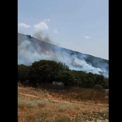 kozan.gr: Ώρα 15:00 Νέα φωτιά σε περιοχή μεταξύ των χωριών Μεταξά – Σαραντάπορου – Kαίγεται δάσος με πουρνάρια –  Η φωτιά είναι κοντά σε δύο ποιμνιοστάσια από την πλευρά του Σαραντάπορου – Οι δυνατοί άνεμοι που πνέουν ανησυχούν τους κατοίκους του Μεταξά μη περάσει η φωτιά προς την πλευρά του δικού τους χωριού (Φωτογραφίες-Βίντεο λήψης 15:00)