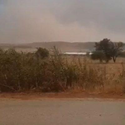 kozan.gr: Ώρα 20:35: Πνιγμένη από σύννεφα σκόνης-τέφρας η Κοινότητα Ακρινής, λόγω των δυνατών ανέμων που πνέουν σε όλη την ευρύτερη περιοχή (Βίντεο)