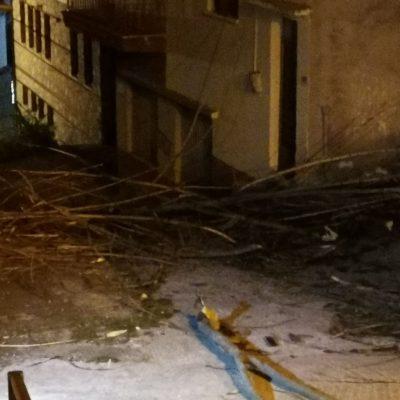 kozan.gr: Σιάτιστα: Λόγω των δυνατών ανέμων, έσπασαν κλαδιά από δέντρα και παρέσυραν και καλώδια ηλεκτρικού ρεύματος (Βίντεο & φωτογραφίες)