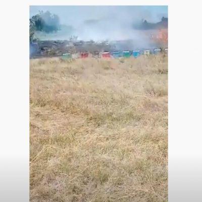 kozan.gr: Φωτιά σε αγροτεμάχιο στην Κοινότητα Ξινού Νερού  – Επιβλήθηκε πρόστιμο 10.000€ στη  μελισσοκόμο, για εμπρησμό από αμέλεια, από το Α.Τ. Αμυνταίου (Βίντεο)