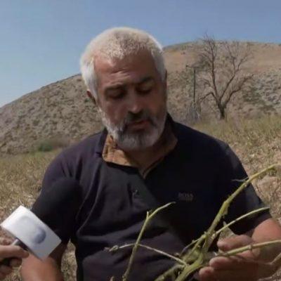 Οι πατατοπαραγωγοί του Πολυμύλου Κοζάνης δείχνουν στην κάμερα της ΕΡΤ1 τις ζημιές που υπέστησαν από το χαλάζι πριν λίγες μέρες (Βίντεο)