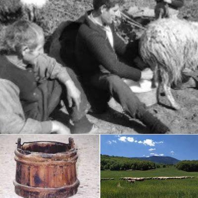 Λιβαδερό, κοντά στο 1960 – H γιορτή του γαλόμετρου (του Κώστα Φαρμάκη)