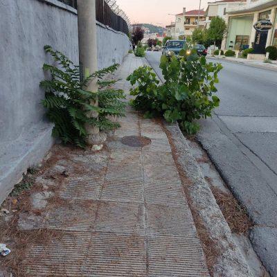 Kozan.gr: Κοζάνη: Αυτό είναι το χάλι από την δεξιά πλευράτου δρόμου, επί της οδού Ανδρέα Παπανδρέου, προς την έξοδο της πόλης. (Φωτογραφίες)