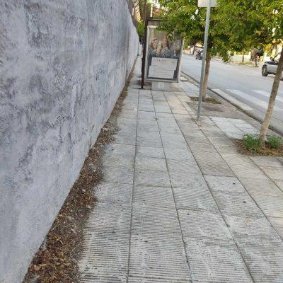 Μετά την ανάδειξη του θέματος από το kozan.gr κόπηκαν τα χόρτα από τα πεζοδρόμια επί της οδού Ανδρέα Παπανδρέου στην Κοζάνη (Φωτογραφίες)