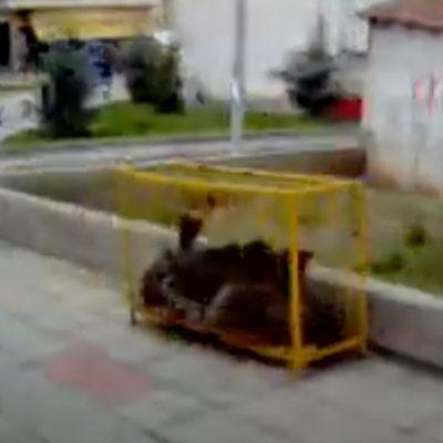 Βίντεο ερασιτεχνικής ποιότητας, φοιτητή το 2005, μέσα από λεωφορείο, που εκτελούσε τη διαδρομή ΤΕΙ Κοζάνης – κεντρική πλατεία Κοζάνης (Βίντεο)