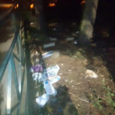 """Σχόλιο αναγνώστη στο kozan.gr: Γεμάτο σκουπίδια, ακόμη μια φορά, το δασάκι """"στο τέλος"""" της κεντρικής λαϊκής αγοράς στην Κοζάνη (Φωτογραφίες)"""