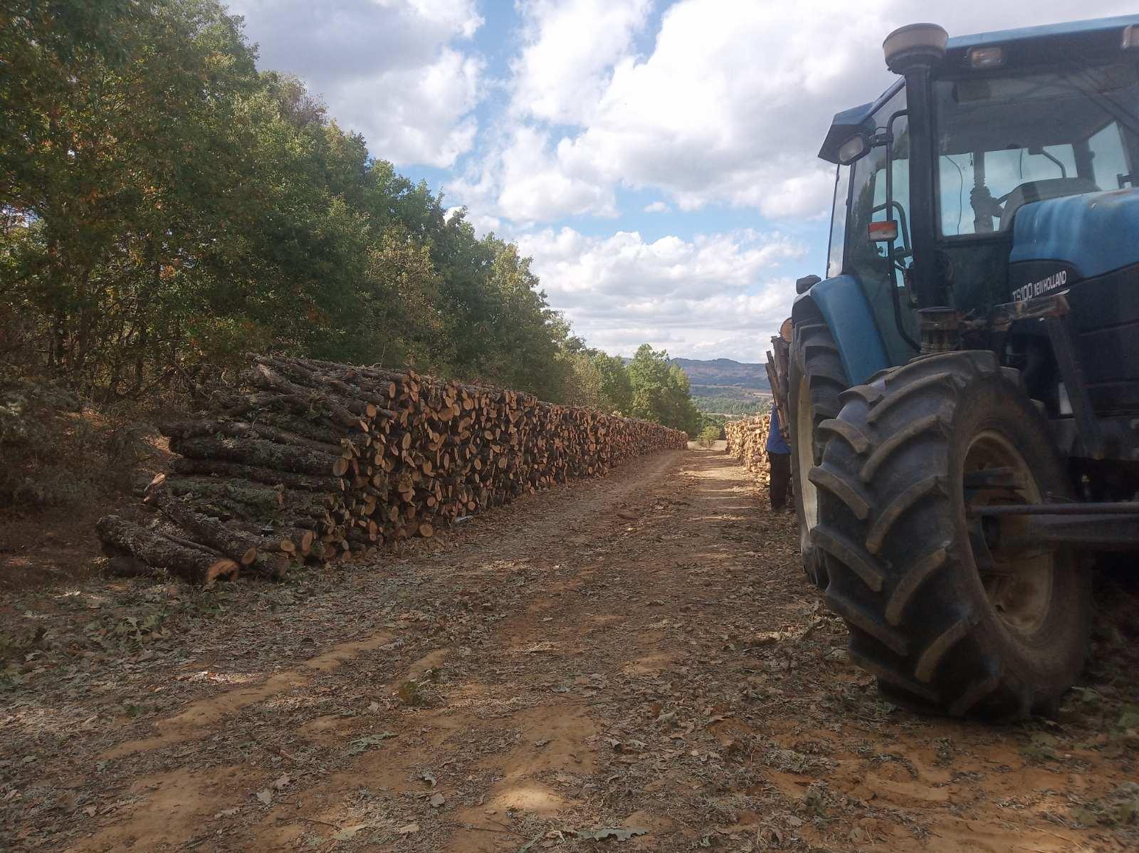 Ομαλή Βοΐου: Ξεκίνησε η διάθεση καυσόξυλων