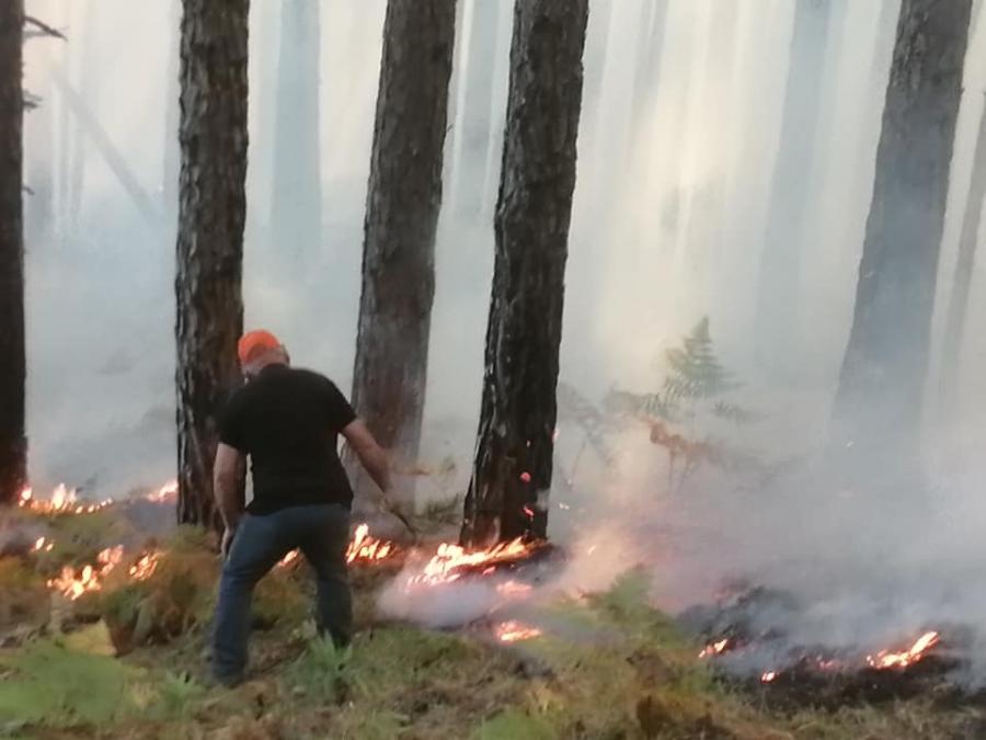 Φωτιά ξέσπασε, το απόγευμα του Σαββάτου, σε δασική έκταση στη θέση Μπαϊτάνη στο Περιβόλι Γρεβενών