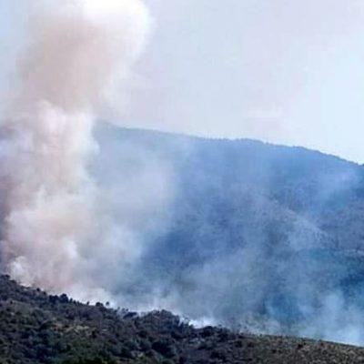 Φωτιά σε χορτολιβαδική & δασική έκταση στην περιοχή του Αγίου Παύλου στο Μεσόβουνο Εορδαίας (Φωτογραφίες & Βίντεο)