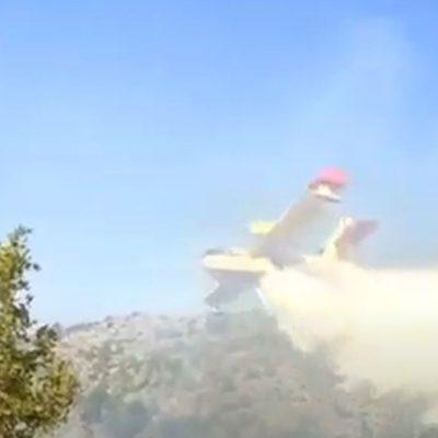 kozan.gr: Άρχισε η επιχείρηση κατάσβεσης από αέρος στη φωτιά στο Μεσόβουνο Εορδαίας – Δύο  Canadair  επιχειρούν στο σημείο (Νέο βίντεο)