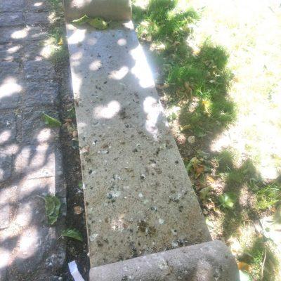 """Σχόλιο αναγνώστη στο kozan.gr: Κοζάνη: Τα """"παγκάκια της κουτσουλιάς"""" στην πλατεία Τιάλιου που δεν τα καθαρίζει κανείς (Φωτογραφίες)"""