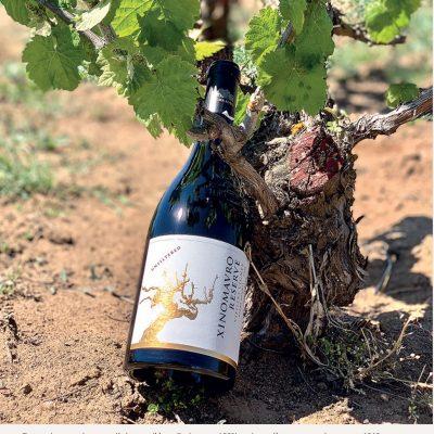 Το Κτήμα Άλφα στο Αμύνταιο φιγουράρει φέτος στη λίστα του αμερικανικού επιδραστικού περιοδικού Wine & Spirits με τα εκατό καλύτερα οινοποιεία του κόσμου