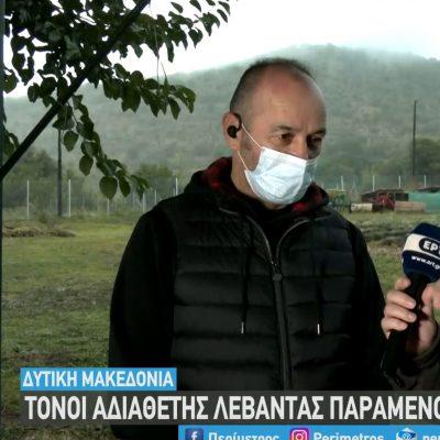 kozan.gr: Mικρόκαστρο Βοΐου: Αδιάθετες μεγάλες ποσότητες αιθέριου λαδιού λεβάντας – Το πρόβλημα ξεκίνησε την τελευταία τριετία (Βίντεο)