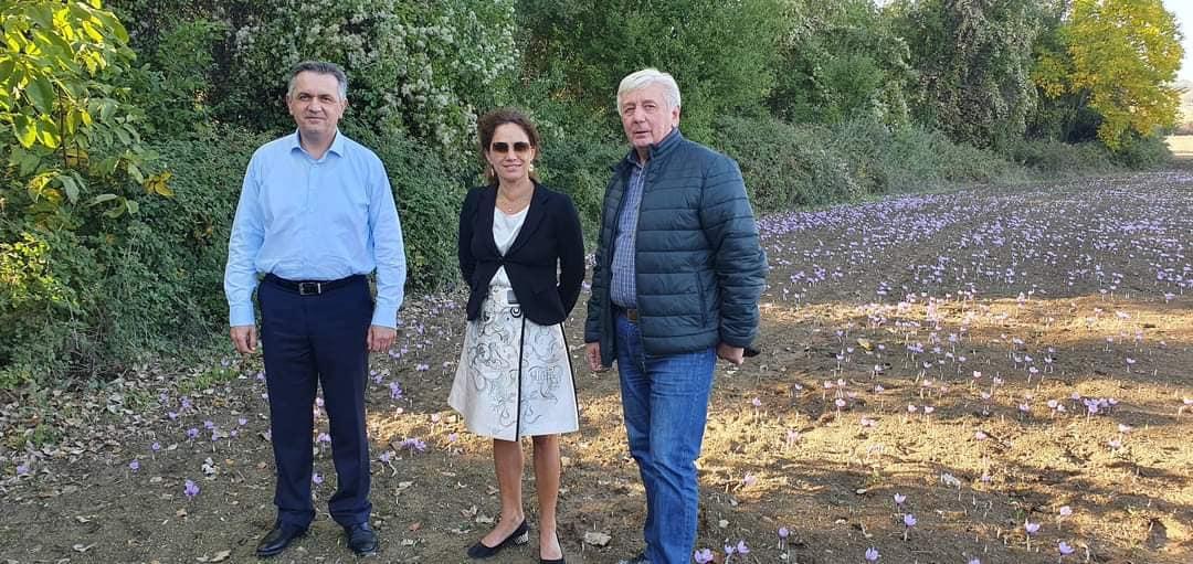 kozan.gr: Στα κροκοχώραφα ο Περιφερειάρχης Γ. Κασαπίδης μαζί με τη Διευθύνουσα Σύμβουλο του ΔΕΣΦΑ Μαρία Γκάλι (Φωτογραφίες)