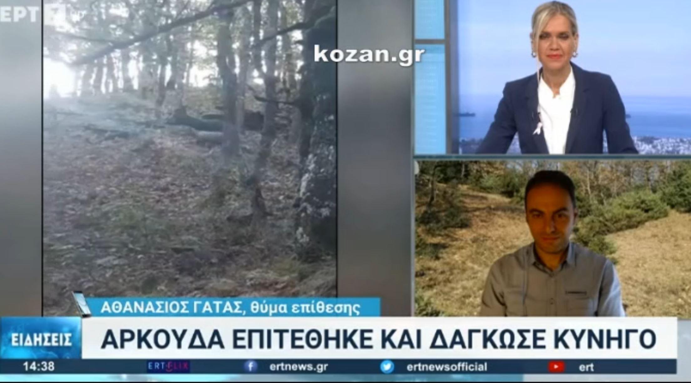 kozan.gr: O A. Γάτας, μίλησε στην ΕΡΤ3, για τον τραυματισμό του από επίθεση αρκούδας, στον Αυγερινό Βοΐου, που τον δάγκωσε στο πόδι – H παρέμβαση του Δ. Παπαγεωργίου, Προέδρου του Κυνηγετικού Συλλόγου Κοζάνης (Βίντεο)